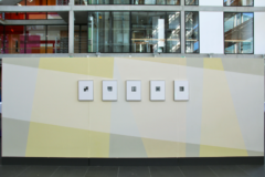 Ausstellungsansicht Frauke Dannert FAGUS, Landesvertretung Niedersachsen in Berlin, 2019