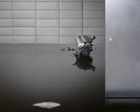 Beate Gütschow, Was entsteht wenn die Perfektion ins kleinste Detail reicht, 2011