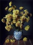 Käthe Buchler, Chrysanthemen, 1913- 1930, Inkjet Print mit pigmentierten Tinten, Abzug 22,5 × 30 cm, Rahmen 30 × 40 cm, Auflage 10, Preis 400 €